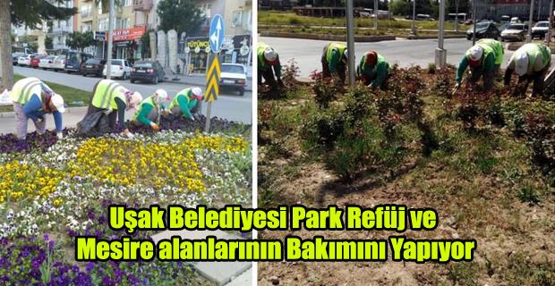 Uşak Belediyesi Park Refüj ve Mesire a Bakımını Yapıyor